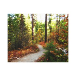 Falls Creek I Canvas Print