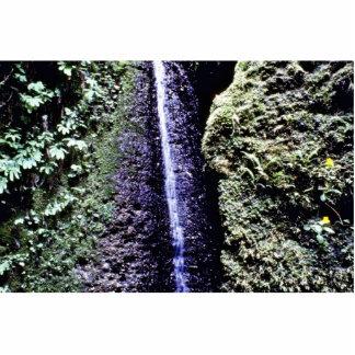 Falls, Fern Canyon, Prairie Creek Acrylic Cut Out