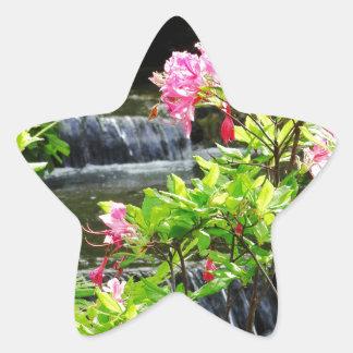 Falls Star Sticker