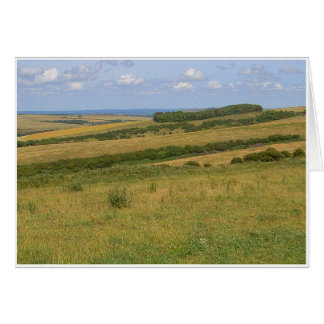 Falmer Downs Card