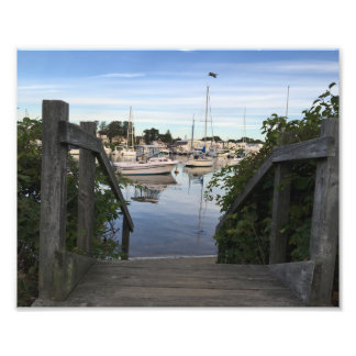 Falmouth Harbor Cape Cod Photo Print
