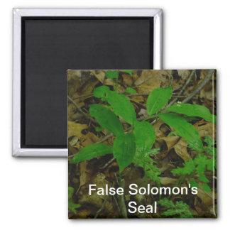 False Solomon's Seal Magnet