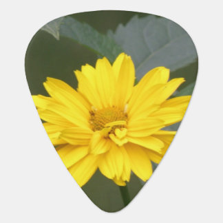 false-sunflower-10 guitar pick
