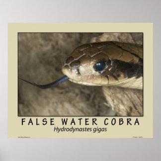 False Water Cobra Poster