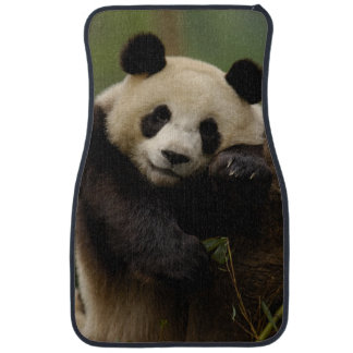 Famille de melanoleuca d'Ailuropoda de panda géant Tapis De Sol