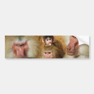 Famille de zoo de Hamadryas Cologne de Papio de Autocollant De Voiture