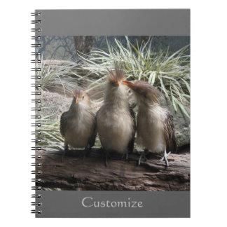 Family Bird Time Notebooks