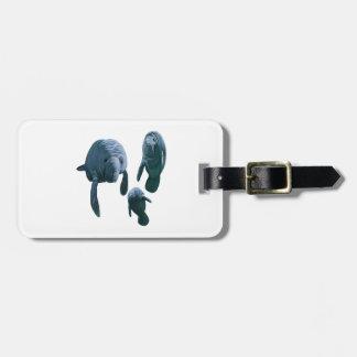 FAMILY FOR THREE LUGGAGE TAG