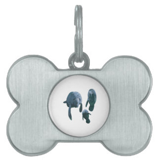 FAMILY FOR THREE PET TAG