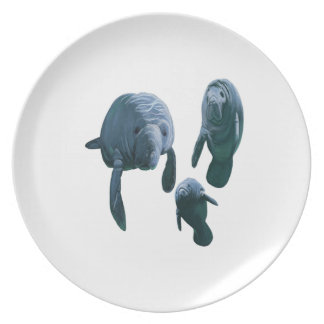 FAMILY FOR THREE PLATE