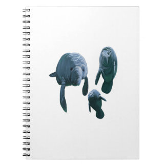 FAMILY FOR THREE SPIRAL NOTEBOOK