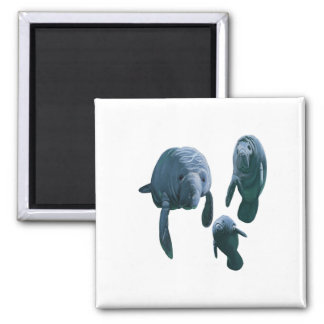 FAMILY FOR THREE SQUARE MAGNET