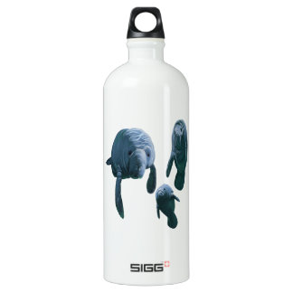 FAMILY FOR THREE WATER BOTTLE