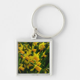 Family Of Daffodils Silver-Colored Square Keychain