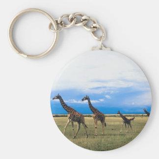 Family of Giraffes Basic Round Button Keychain