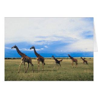 Family of Giraffes Greeting Card