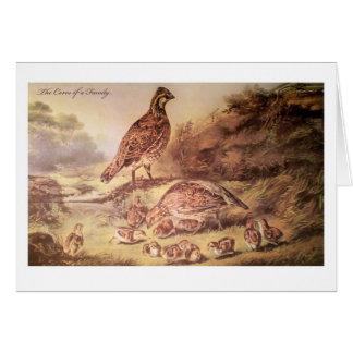 Family of Quail Greeting Card