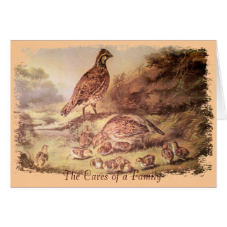 Family of Quail Thank You Card