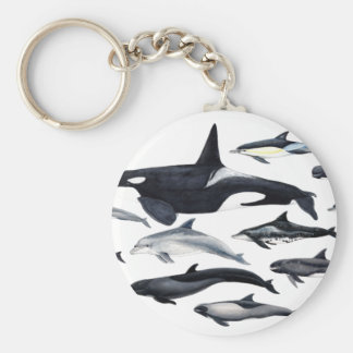 Family of the dolphins: orcas, dolphins, marsopas basic round button keychain