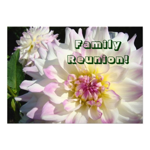 Family Reunion! invitation Cards Announcements