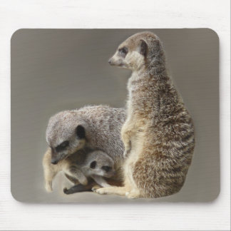 Family ties mouse pad