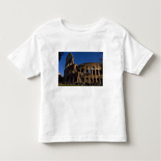 Famous Colosseum in Rome Italy Landmark Tees