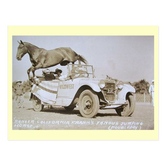Famous Jumping Horse, Rodeo, California Vintage Postcard