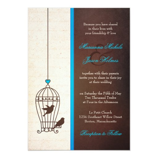Fanciful Bird Cage Teal Chocolate