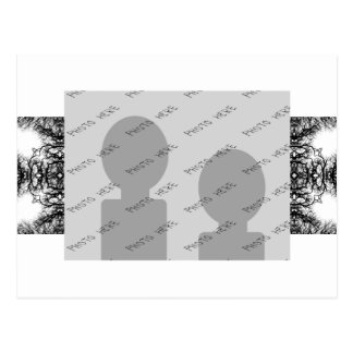 Fancy Black and White Pattern Post Cards