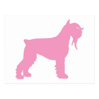 Fancy Giant Schnauzer pink Postcard