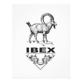 Fancy Ibex animal Letterhead