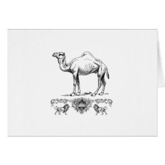 fancy lion camel card