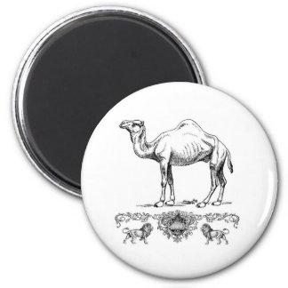 fancy lion camel magnet