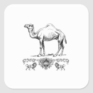 fancy lion camel square sticker