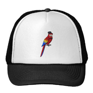 Fancy Parrot Mesh Hat