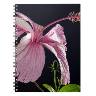 Fancy Pink Flowers Blossoms Shower Wedding Bridal Notebooks