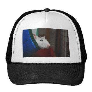 Fancy rat trucker hat