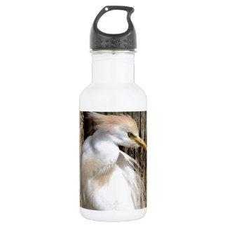 Fancy White Egret
