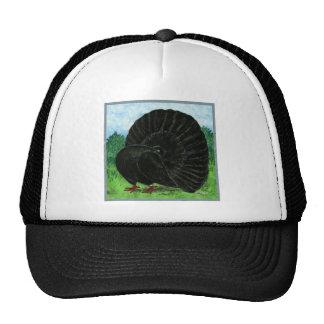 Fantail Black Hat