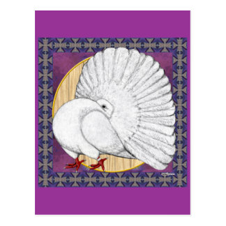Fantail:  White With Background Postcard