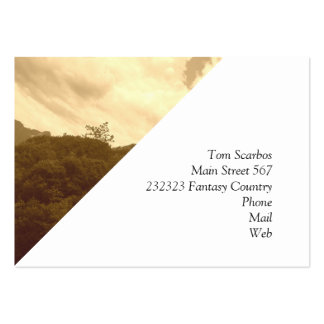 fantastic landscape,sepia,Austria 10. Large Business Cards (Pack Of 100)