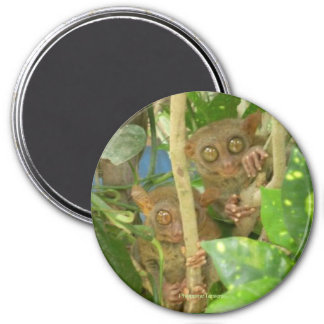 Fantastic Tarsiers on round Magnet