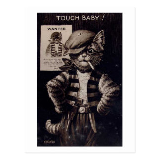 Fantasy Cat, Tough Baby Vintage Postcard