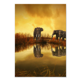 """Fantasy Elephant 3.5"""" X 5"""" Invitation Card"""