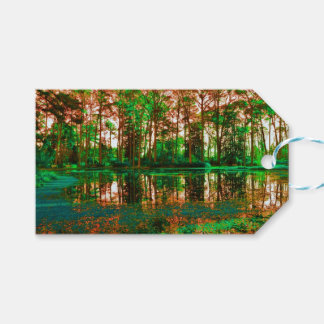 Fantasy Forest Pack Of Gift Tags