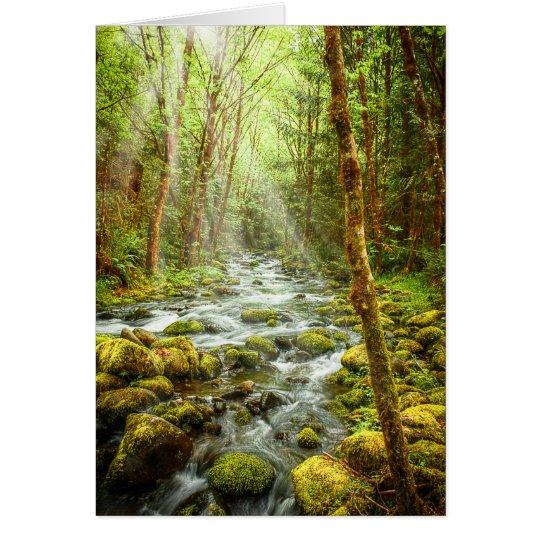 Fantasy Forest Stream Card