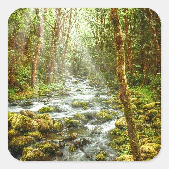 Fantasy Forest Stream Square Sticker