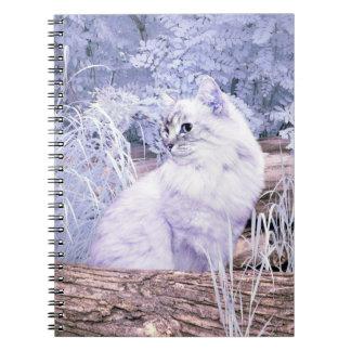 Fantasy kitty cat notebook