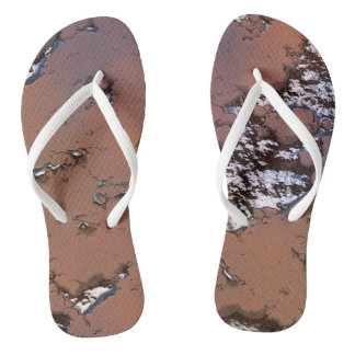 fantasy planet surface 1 flip flops