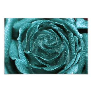 Fantasy Teal Rose Photo Print